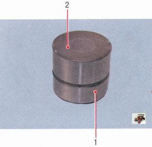 гидротолкатели двигателя ВАЗ 21126: 1 - клапан; 2 - пружина обратного клапана / Лада Приора ВАЗ 2170