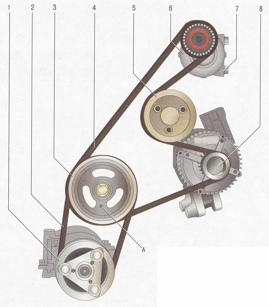Ремни привода вспомогательных агрегатов Форд Фокус 2