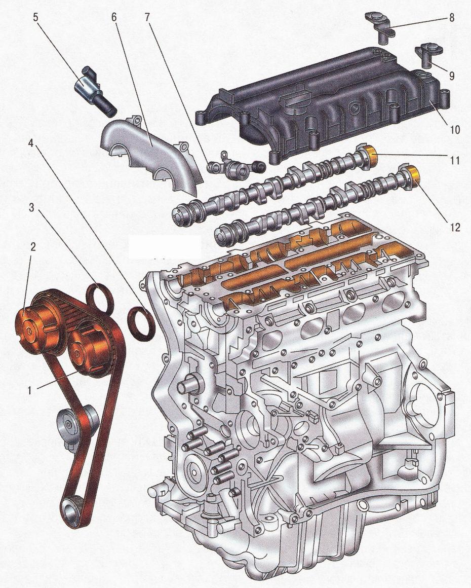 Элементы системы изменения фаз газораспределения (VCT) автомобиль Форд Фокус 2