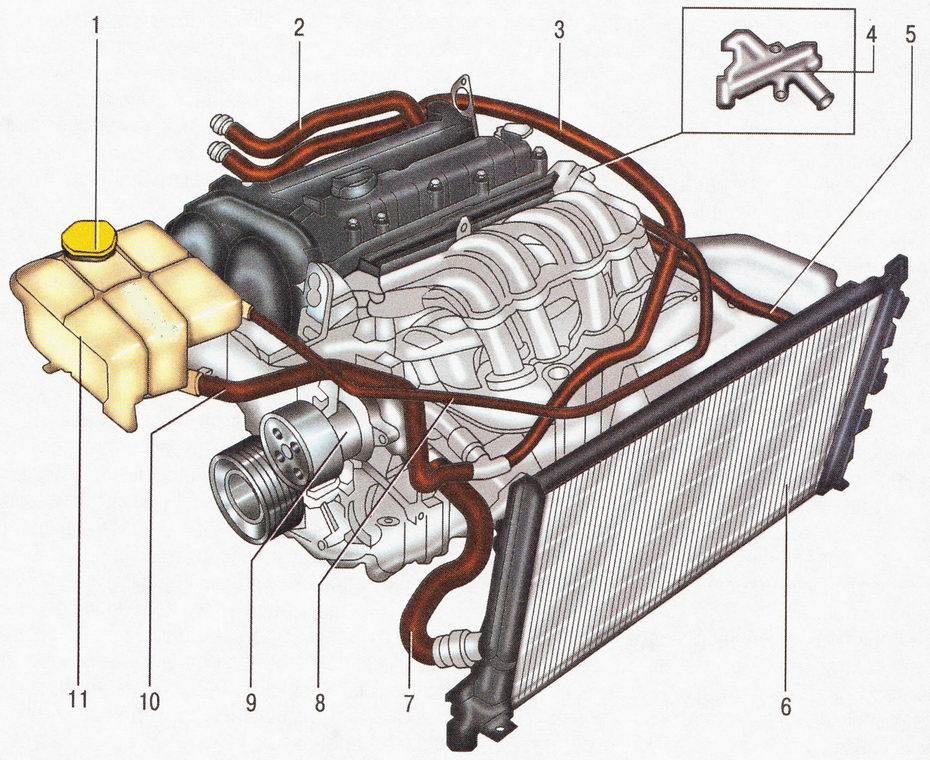 Система охлаждения двигателя Форд Фокус 2
