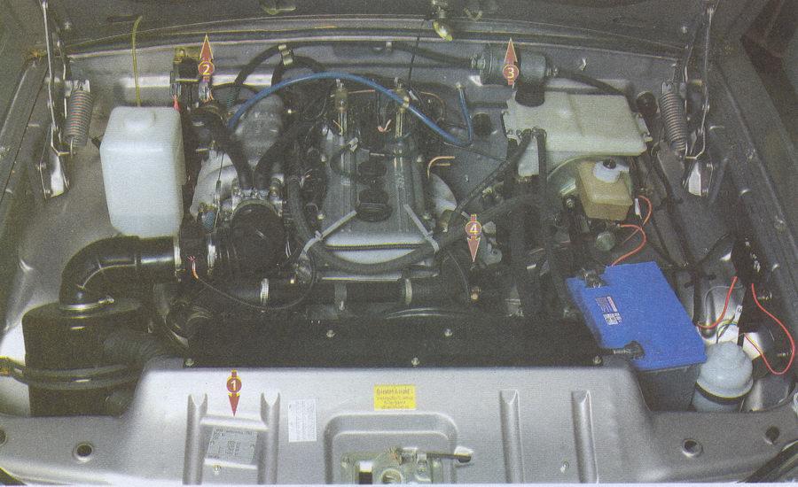 места нанесения индивидуальных номеров на автомобиле Волга ГАЗ 31105
