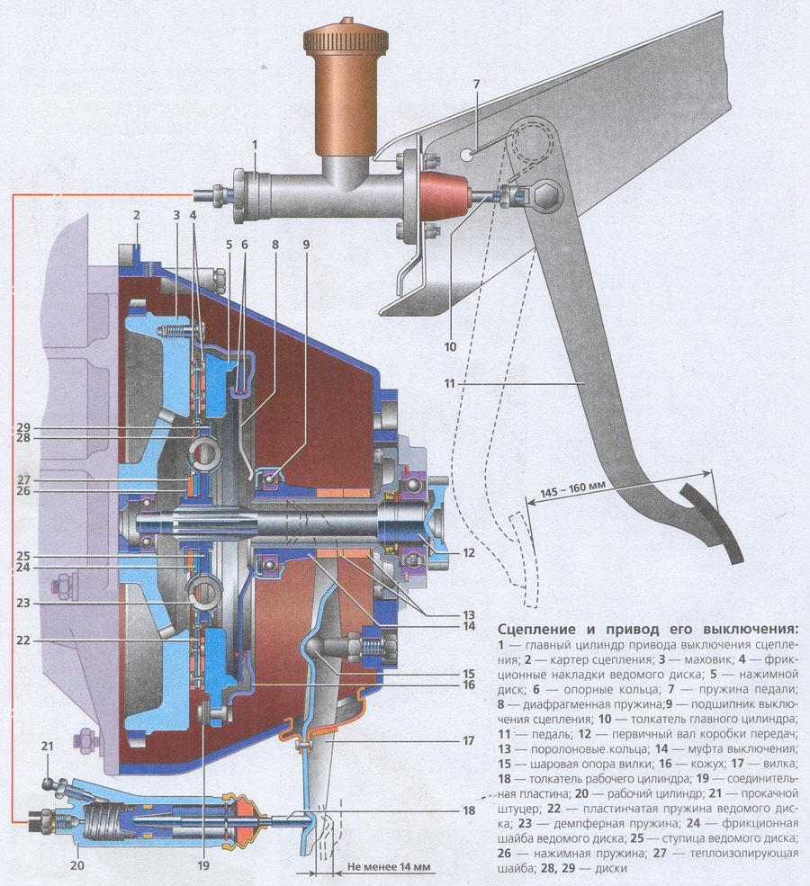 Схема устройства сцепления Волга ГАЗ 31105