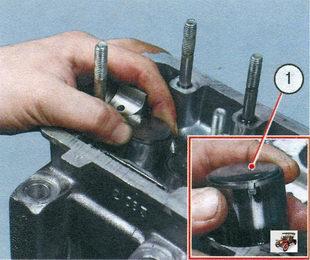 1 - толкатель клапана вместе с регулировочной шайбой Лада Калина ВАЗ 1118