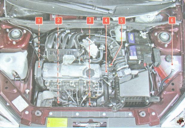 расположение основных элементов системы охлаждения двигателя