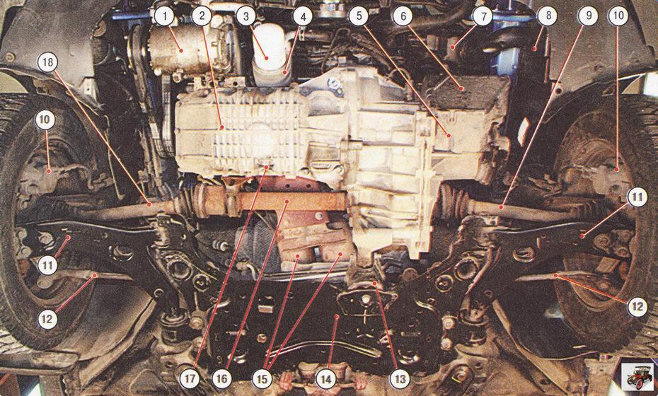 Подкапотное пространство автомобиля Форд Фокус 2 с двигателем 1,6 л Duratec Ti-VCT (вид снизу, защита двигателя снята)